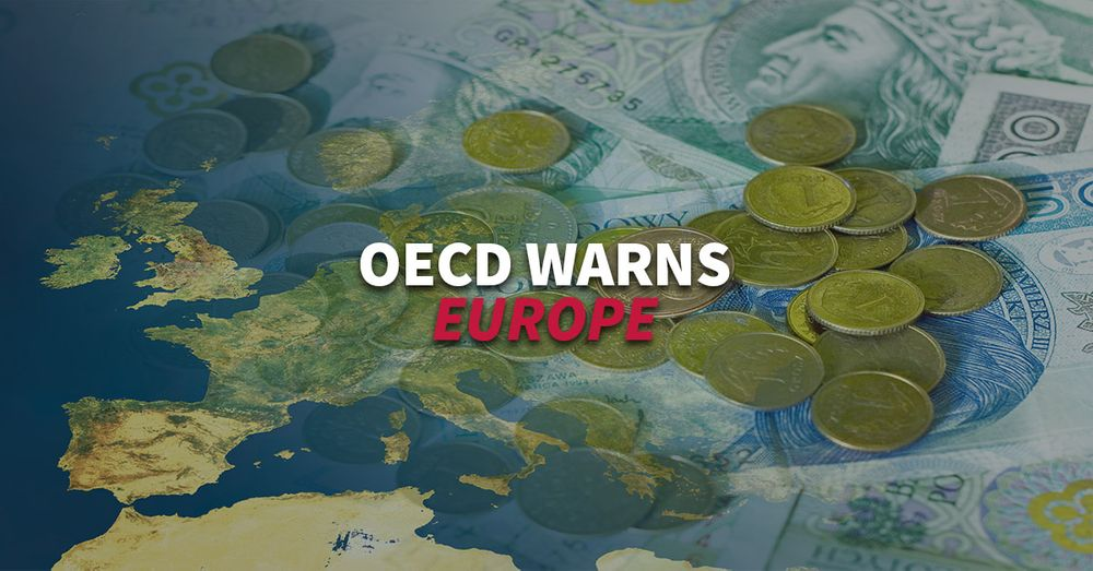 Is Europe prepared for a global economic shock? Warning from OECD