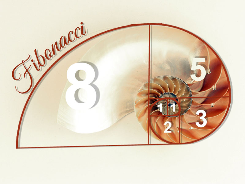Fibonacci – Popular, Powerful and Self-fulfilling